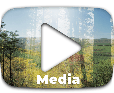 shafford-media-button3
